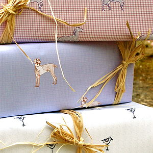 Jimmy Gift Wrap - wrapping paper