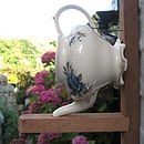 Teapot Bird Nest Sideview