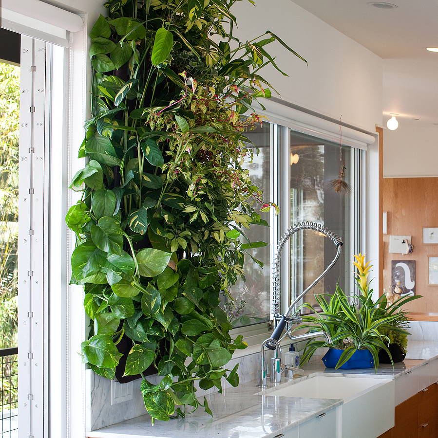 Indoor Kitchen Garden josaelcom
