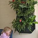 Woolly Wally Pocket Vertical Wall Planter