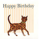 Striped Cat Birthday Card