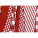 Shades of Red Bunting Close Up