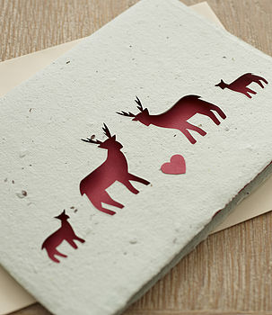 Large Plantable Reindeer Christmas Card