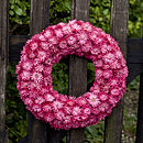 Pink Ring Wreath
