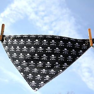 Skulls And Crossbones Bandana Bib