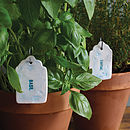 Ceramic Herb And Vegetable Labels
