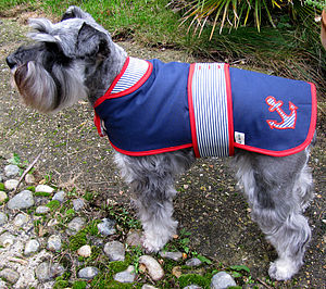 Handmade Retro Dog Coat - clothes & accessories