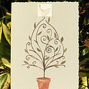 Pack Of Five Christmas Cards With Seeds