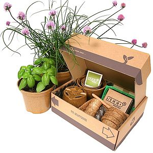 Herb Seeds Starter Pack - alternative hampers