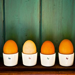 Set Of Four 'ŴY' Egg Cups - dining room