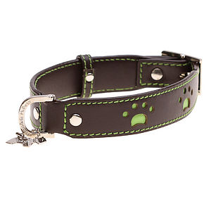 Paws Leather Dog Collar