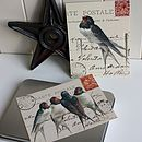 Gift Set Of 16 'Mixed Swallow' Postcards