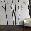 Silver Birch Tree Wall Stickers