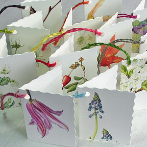 Pack Of Six Assorted Botanical Gift Tags - wedding favours