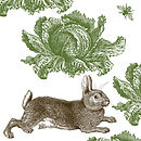 Rabbit And Cabbage Fabric Design