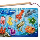 Magnetic Fishing Puzzles