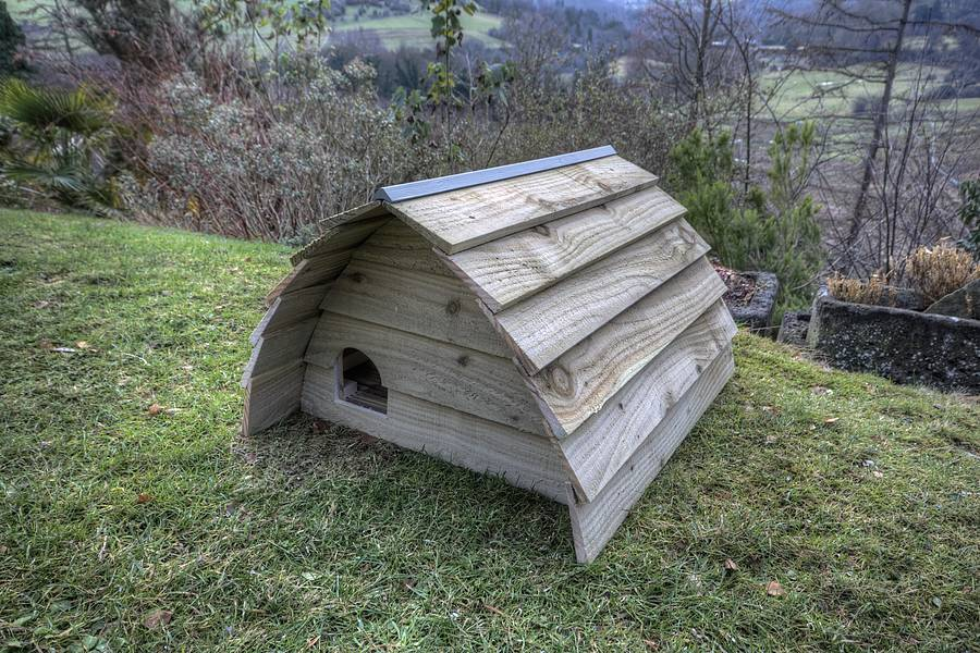 Diy hedgehog house dimensions
