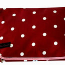 Wash Bag Issy Red Spot