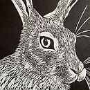 Detail of Hare Print