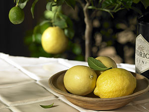 Lemon Tree Gift - outdoor decorations