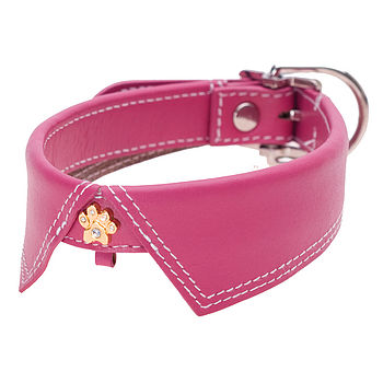 Savile Row Pink Collar