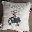 Personalised Teddy Bear Boy Cushion
