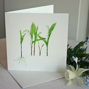 'Lily Of The Valley' Flower Card - wedding cards