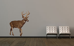 Best Of British Deer - wall stickers
