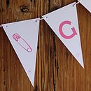 It's A Girl Bunting Closeup Small