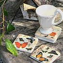 Set Of Four Butterfly Or Tulip Coasters