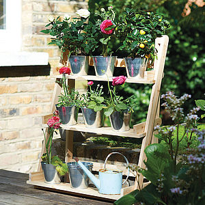 Three Tier Herb And Plant Theatre With Zinc Pot Set - best in show