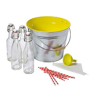 'Bucket of Fun' Homemade Lemonade Kit