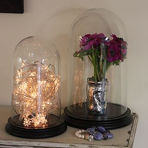 Glass Bell Jar Dome With Wooden Base - ornaments