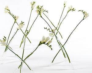 Glass Sprig Vase - table decorations