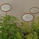 Set Of Six Iron Herb Planter Sticks