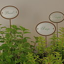 Set Of Six Iron Herb Planter Sticks