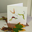 'Maple Seeds' Autumn Nature Card