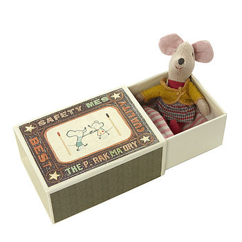Baby Mouse In A Matchbox