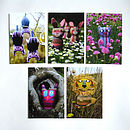 Animal Postcard Set
