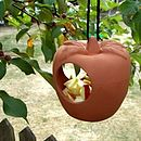 English Apple Garden Bird Feeder