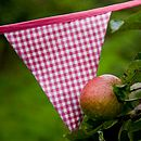 Girl's Bunting   Pink Gingham 5m