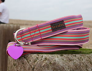 Scrufts Mivvi Striped Dog Collar And Lead - pet leads & harnesses
