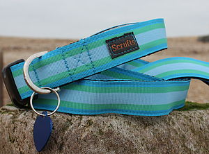 Scrufts Selsey Bill Striped Dog Collar And Lead - pet leads & harnesses