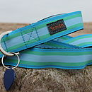 Selsey Bill Striped Dog Collar And Lead