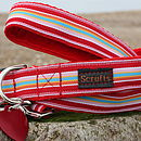 Raspberry Ripple Striped Dog Collar And Lead