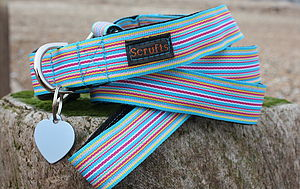 Sidmouth Striped Dog Collar And Lead - pet leads & harnesses