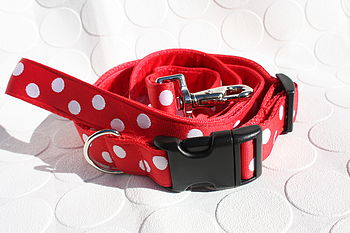 Scrufts Oslo Dog Collar And Lead