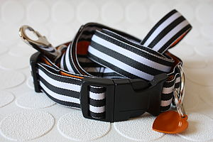 Humbug Striped Dog Collar And Lead - pet accessories