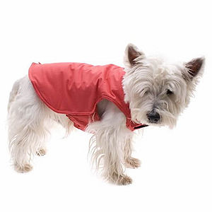 All Weather Dog Coat - dogs