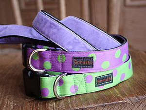 Lily Apple Spotty Dog Collar And Velvet Lead - walking